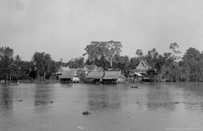 Landschaft am Menamfluss (Siam)